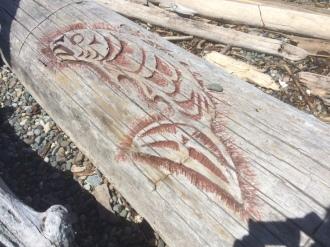 salmonbeauty